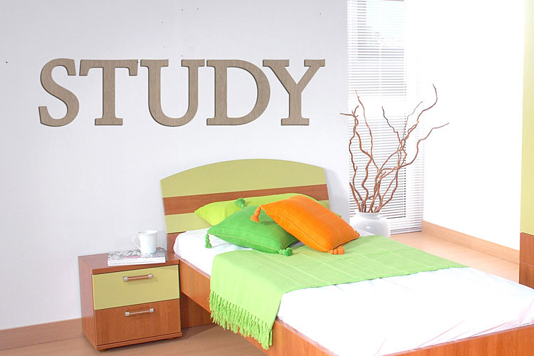 STUDY 우드스티커 월데코